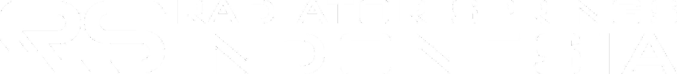 Logo PT. Radiator Springs Indonesia